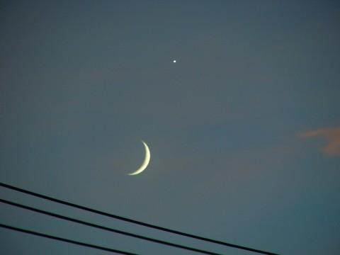 月と宵の明星(?)